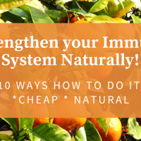 Strengthen Your Immune System Naturally And Help Fight The Coronavirus - Cheap Ways To Do It